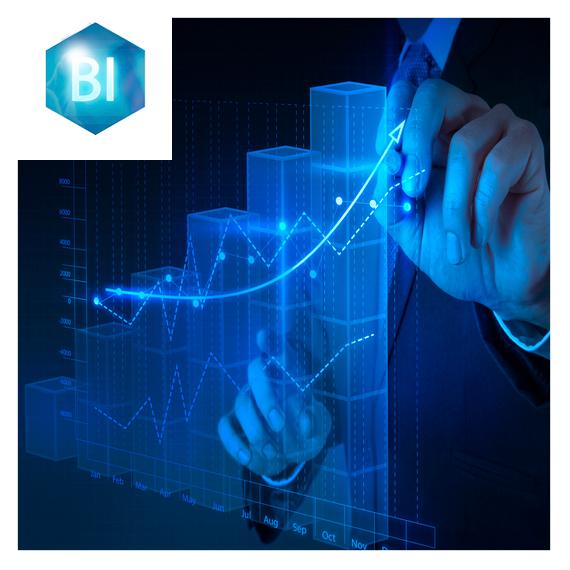Course Image BI-PU-02 Business Intelligence (BI) & Microsoft Excel Intermedio
