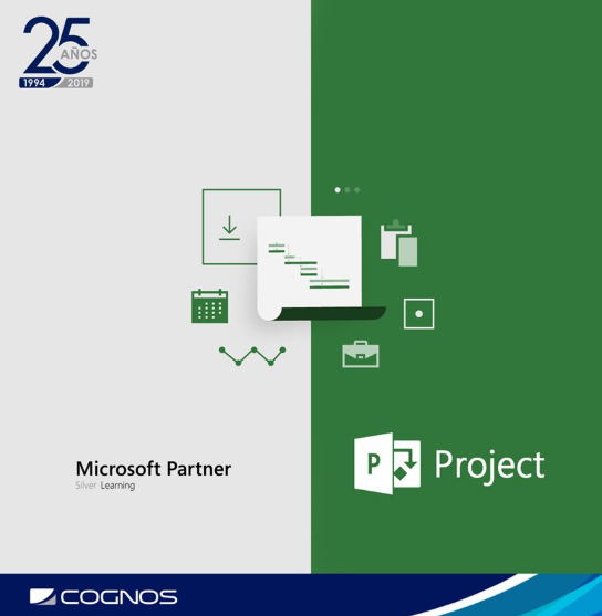Course Image MICROSOFT PROJECT I
