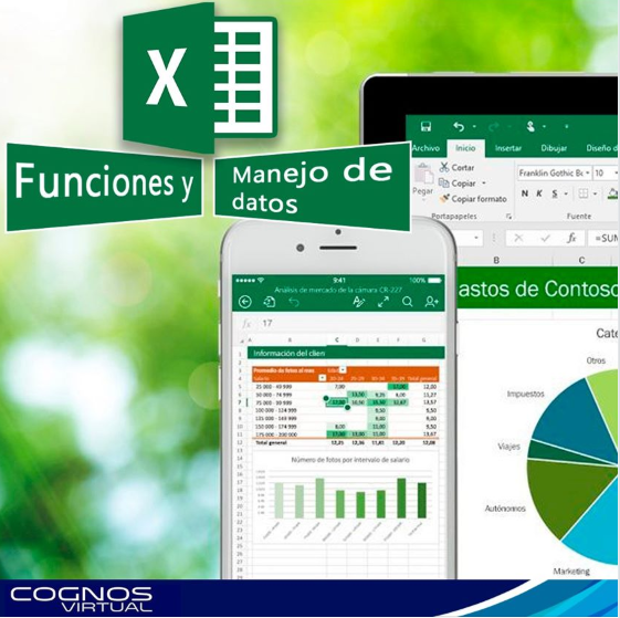 Course Image OFF-705-1 Microsoft Office Excel 2016: Nivel II – Funciones y manejo de datos